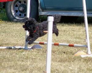 agility sept 07 #4